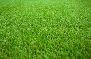 Artificial Grass Installers Near Walkden (0161)