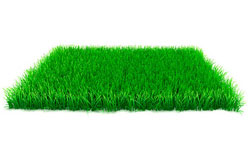 Tiptree Artificial Grass Installers Near Me