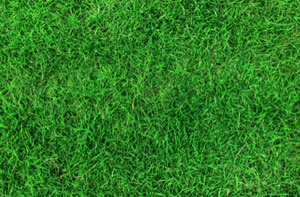 Artificial Grass Installers Near Dursley (01453)