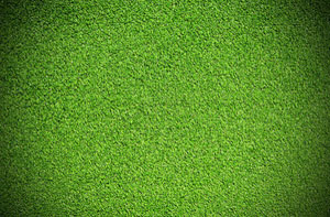 Artificial Grass Installers Near Eccles (0161)